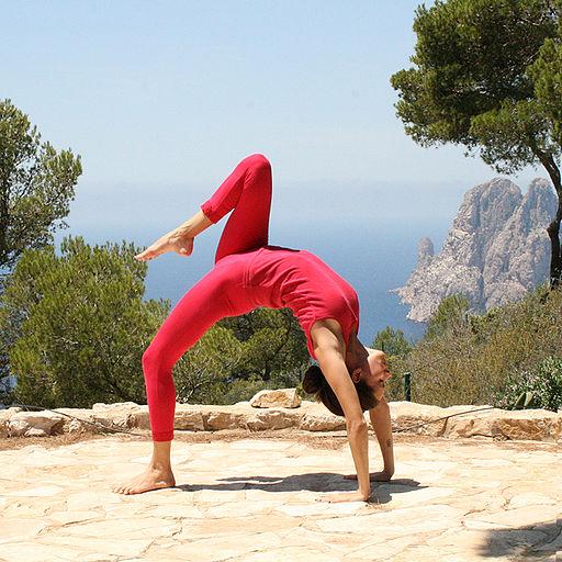 (Photo credit: https://upload.wikimedia.org/wikipedia/commons/b/b4/Eka-Pada-Chakrasana_Yoga-Asana_Nina-Mel.jpg)
