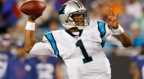 Carolina Panthers banking on return to playoffs: Win total examined for 2014 season
