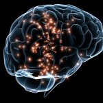 Food Predictions – 2016's Top Brain Foods